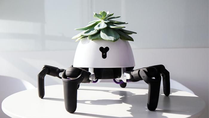 robot váza