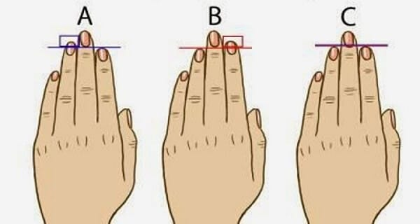finger sizes