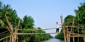 Monkey Bridge, Vietnam