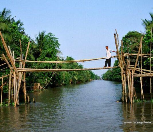 Monkey Bridge, Vietnam